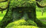 garden-104