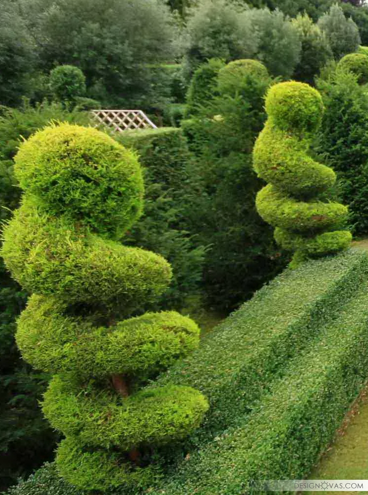 garden -109