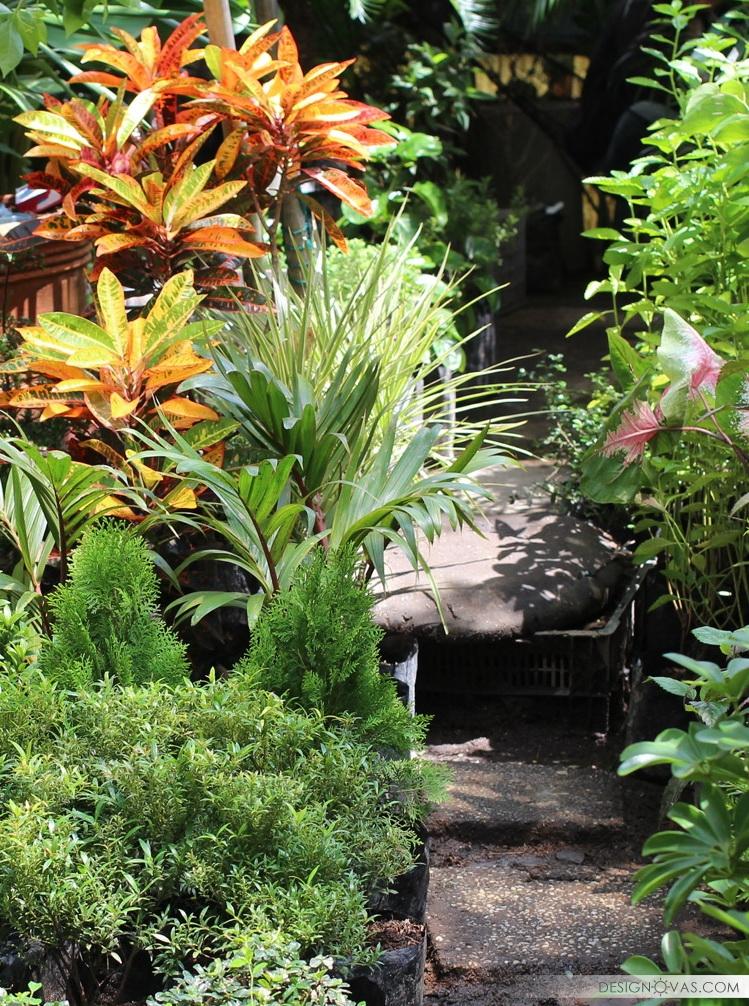 garden 200