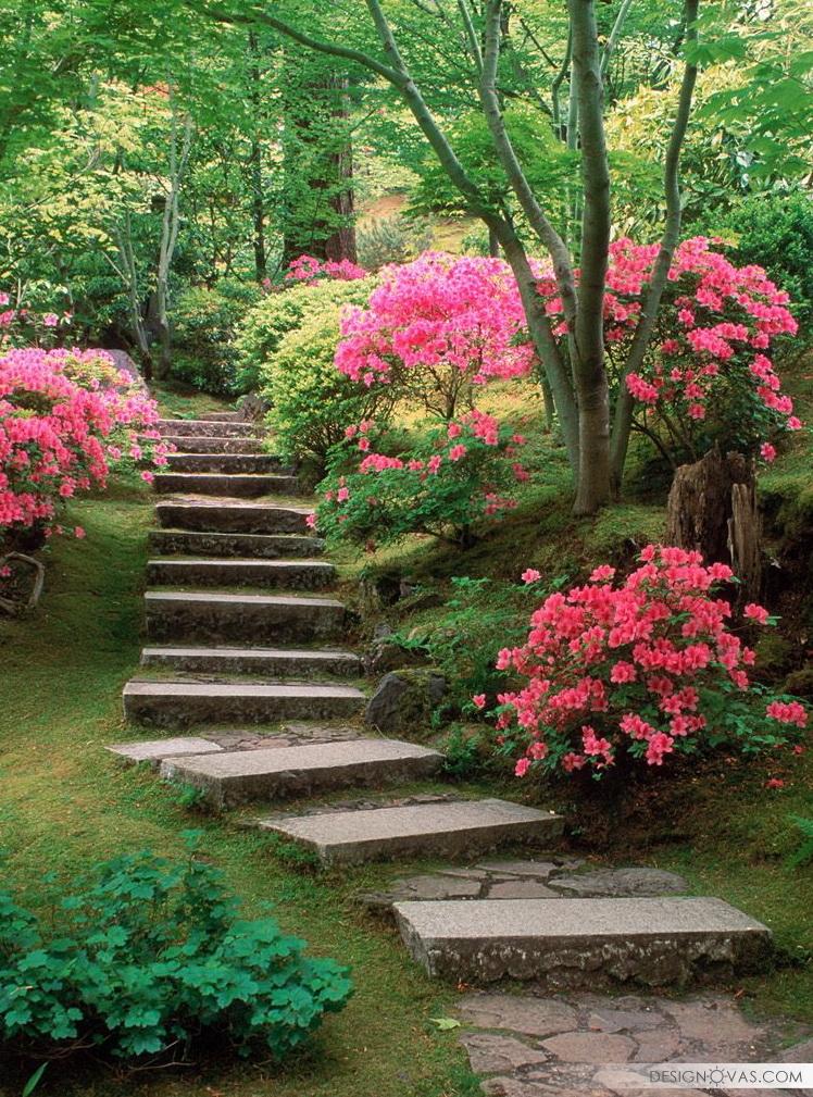 garden -204
