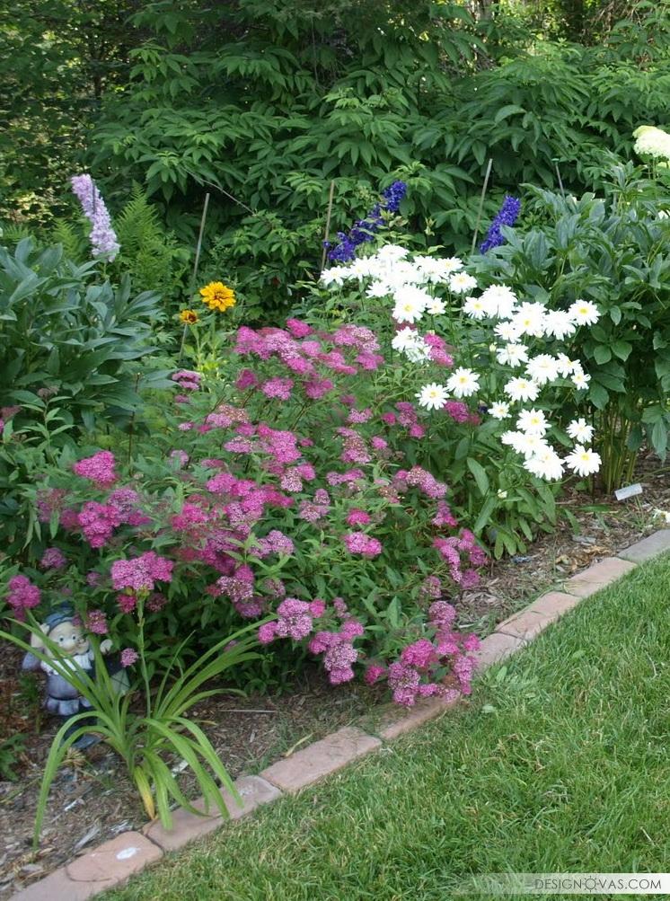 garden -307