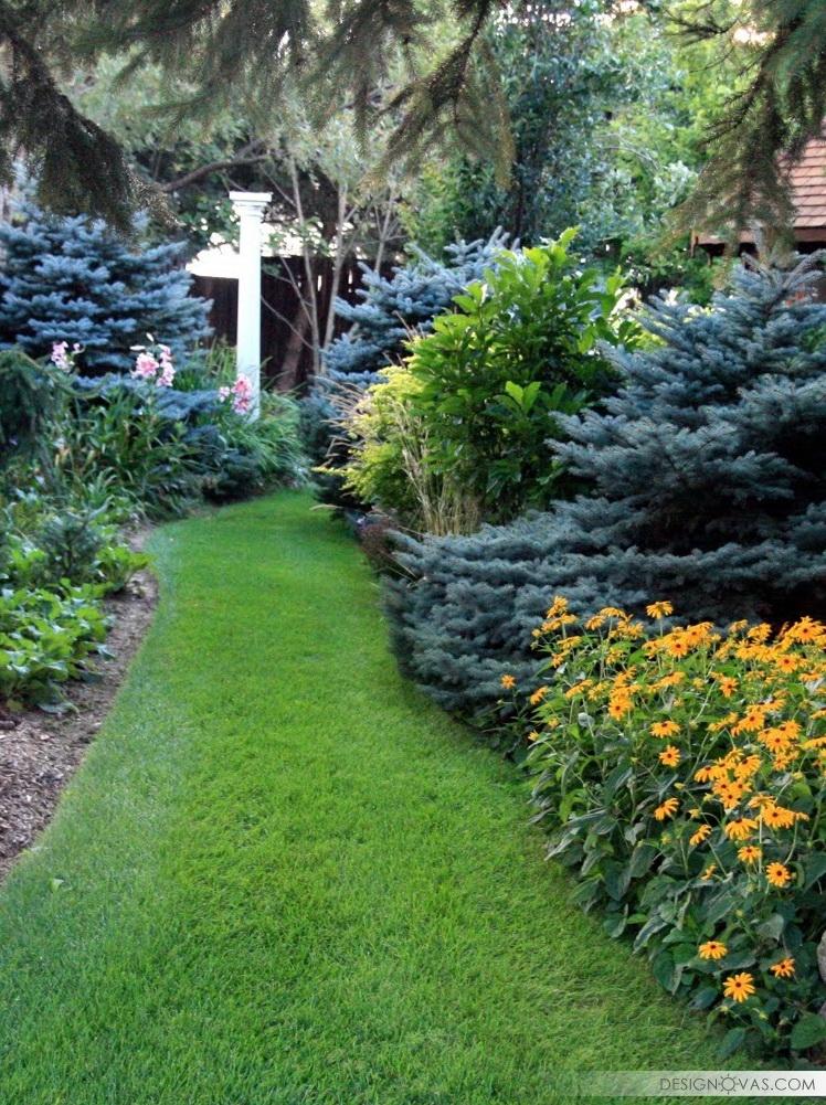 garden -312